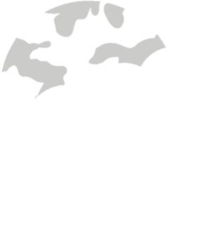 Click to View the Website for Project Santuary